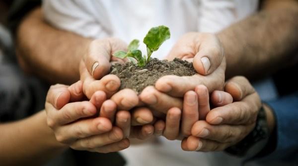 Outil de communication pour engager une démarche de développement durable dans l'entreprise. Ne pas succomber au greenwashing ou blanchiment écologique